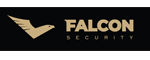 Falcon Security
